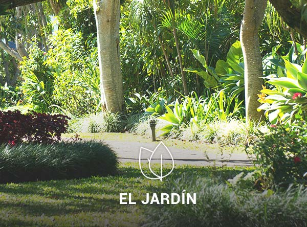 Jardin-4-2