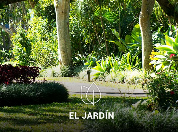 Jardin-4
